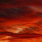 Desert Delight by Linda Sparks