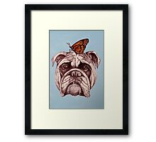 Don't worry, it's only a butterfly. Framed Print