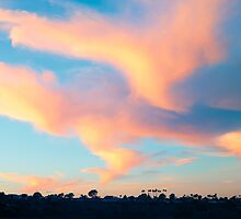 Last Sunset 2013 - Newport Beach California by Ram Vasudev