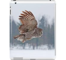 Flyby - Great Grey Owl iPad Case/Skin