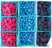 Farm Fresh Berries - Raspberries Blueberries Blackberies Poster