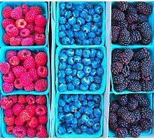 Farm Fresh Berries - Raspberries Blueberries Blackberies Photographic Print