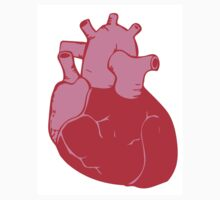 Human Heart by bbesemer