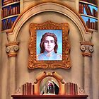 The Enchanted Library by Sara Hargis