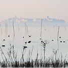 Città sopra la nebbia, city above the fog, Castiglione del Lago, Lago Trasimeno, Umbria, Italy by Andrew Jones