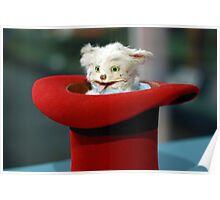 Funny Vintage Magician Kitten Cat in a Hat Photograph Poster