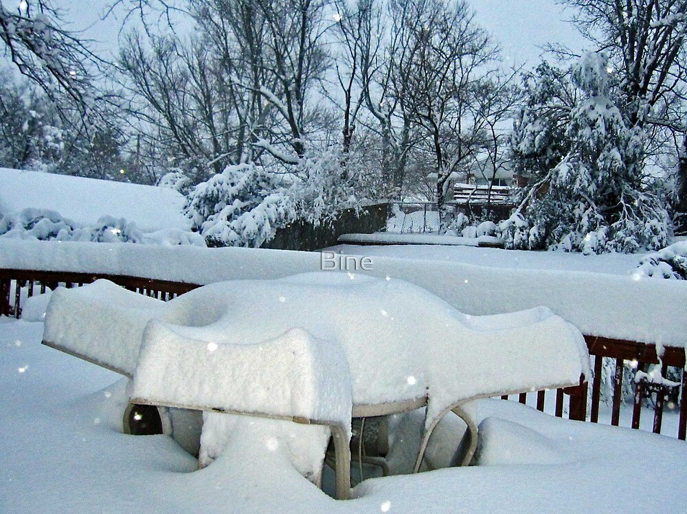 No Picnic Today !  by Bine