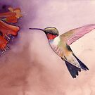 Hummingbird by Ray Shuell