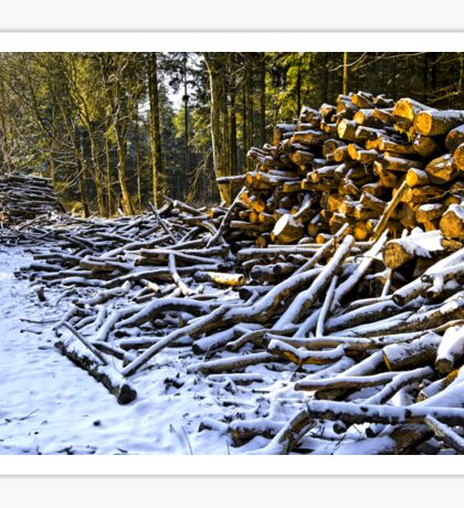 Snow covered woodpiles Sticker