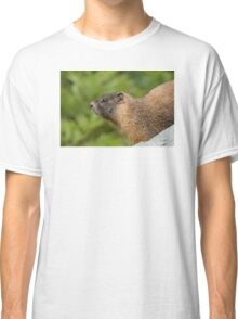 My Beautiful Fur Classic T-Shirt