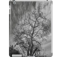 Winter iPad Case/Skin