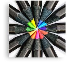 Black Colorful Pencils Canvas Print