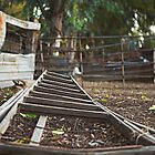 Fallen ladder by MarthaBurns