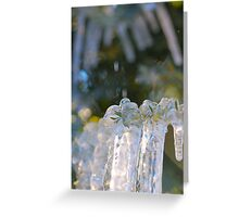 ice... Greeting Card