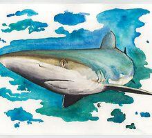 Dusky Shark by Kyra Kalageorgi