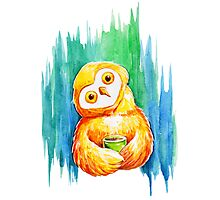 Drawing cute owl Photographic Print