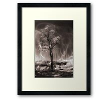 Mystery of the Tree Framed Print