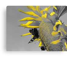 Nectar and Pollen Gatherers Metal Print