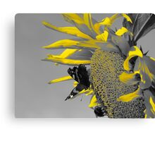 Nectar and Pollen Gatherers Canvas Print