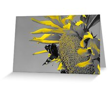 Nectar and Pollen Gatherers Greeting Card