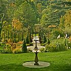 A formal garden by cclaude