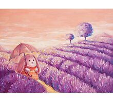 Bunny in lavender fields Photographic Print