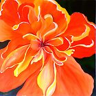 Hibiscus by sooziii