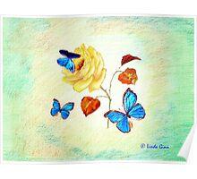Morph Butterflies on Yellow Rose Poster