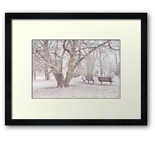 Light Walk in the Snowy Old Park Framed Print