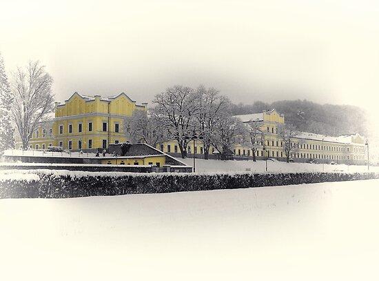 The Yellow House - Rehab Center Ybbs On The Danube by Menega  Sabidussi