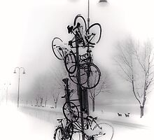 Bicycle Lamppost In Winter by Menega  Sabidussi