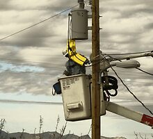Electric Power Lineman by ptosis