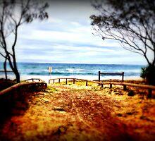 The Beach Path by Melanie Froud