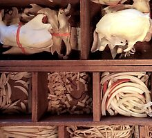 Box o' Bones by sophiajean
