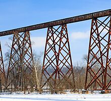 The Tulip Train Trestle by Kenneth Keifer
