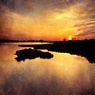 Purple Sunset by Jonicool