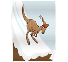 Kangaroo Ski Jump Poster
