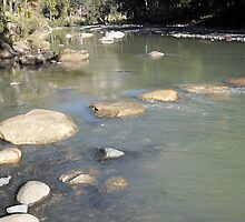 River Crossing, Carnarvon Gorge, Queensland by toryroetwo