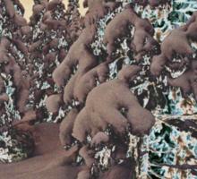 Snowy Woods IV Sticker