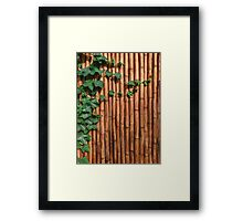 Bamboo Wall With Green Ivy Framed Print