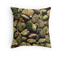 Stones in Pond Throw Pillow