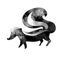 Skunk by randoms