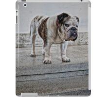 bulldog in white iPad Case/Skin