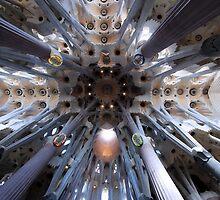 La Sagrada Famìlia Forrest of Pillars by James Hanley