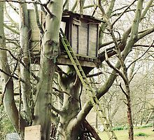 The Tree House by Ludwig Wagner