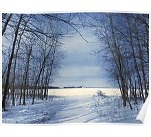 Wintertime At Sheldon Marsh Poster