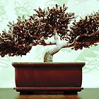 Jade Green Bonsai by MSRowe Art and Design