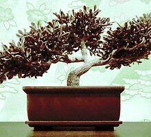 Jade Green Bonsai by SRowe Art