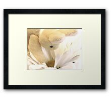 Peeking In To Say How Are You? Framed Print