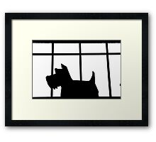 How Much is that Doggy…. Framed Print